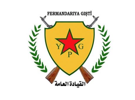 YPGlogo