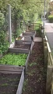basha_nursery_gardens_community_garden